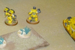 Imperial Fists & Astra Millitarum